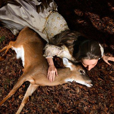 Tom Chambers摄影作品:Entropic Kingdom