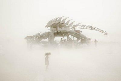 Eric Bouvet摄影作品:火人节