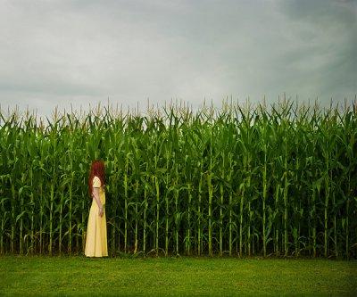 Patty Maher摄影作品