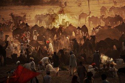 Tito Dalmau摄影作品:印度