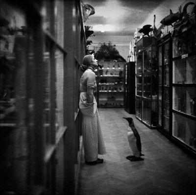 Ivan Palis摄影作品