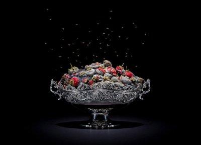 Klaus Pichler摄影作品:腐烂的食物