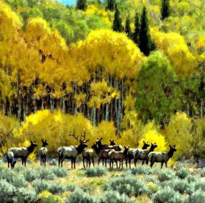 美国Tucker Smith风景油画作品欣赏