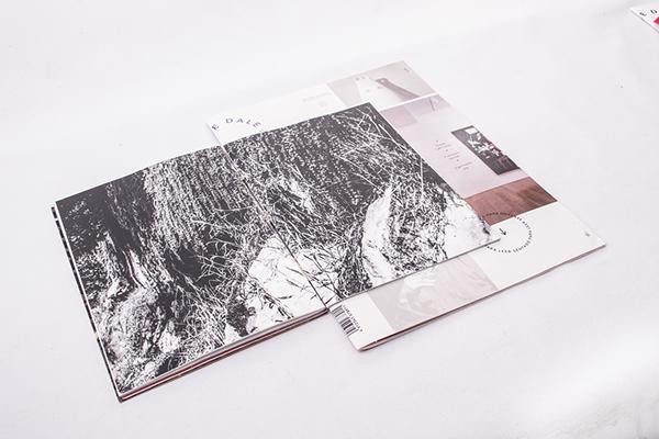 DALE文化杂志封面版式设计