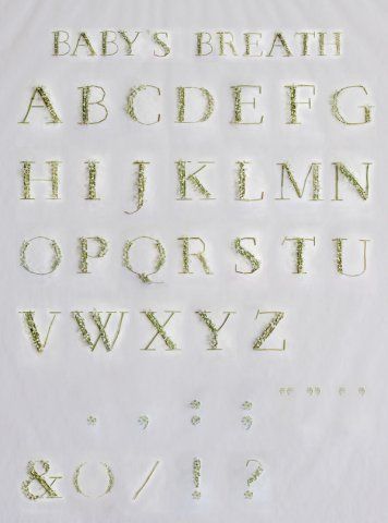 Keziah Chong满天星字体设计