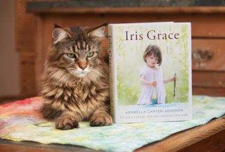 Iris Grace 被一只猫治愈了的孤独症小萝莉和她的画