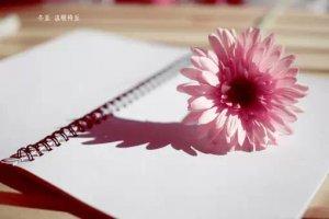六六:写给岁月的感谢信