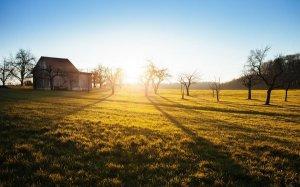 你真以为早起早睡每天跑步能改变你的生活?