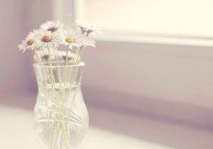 早安心语:有一个可以想念的人,就是幸福