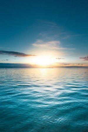 早安心语:你那么擅长安慰他人,一定度过了很多自己安慰自己的日子吧