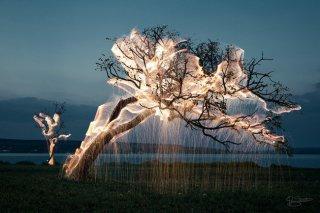 巴西摄影师 Vitor Schietti 创意摄影作品