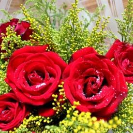 结婚纪念日送花 13种热门结婚纪念花卉推荐
