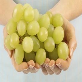 葡萄为什么会裂开 葡萄裂果的5大原因