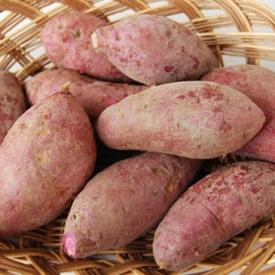 红薯有黑斑还能吃吗 只有受黑斑病侵袭的不能吃
