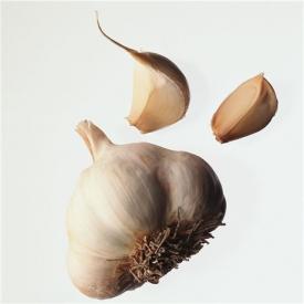 大蒜发芽能吃吗 大蒜发芽吃了没坏处