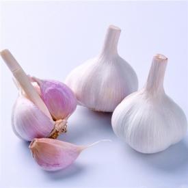 大蒜里面绿色能吃吗 绿的大蒜能不能吃要视情况而定