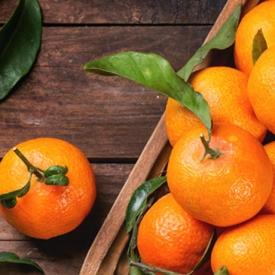 冬天吃橘子有什么好处 冬季时令水果橘子吃起来