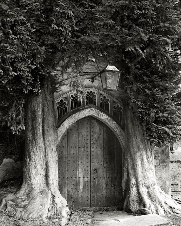 beth-moon-The-Sentinels-of-St-Edwards-573x716