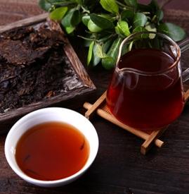 减肥喝生普洱还是熟普洱效果好 普洱减肥生茶还是熟茶
