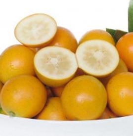 金桔吃完嘴麻 吃金桔麻嘴是什么原因