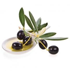 橄榄油祛痘吗 橄榄油祛痘需坚持