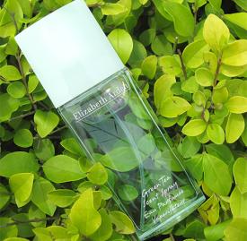 雅顿绿茶香水怎么样 清新绿茶入门级香水