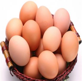 不同蛋类的营养价值 这些蛋类的营养价值丰富