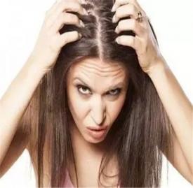 头发出油的原因及解决 头发经常出油该怎么办吗